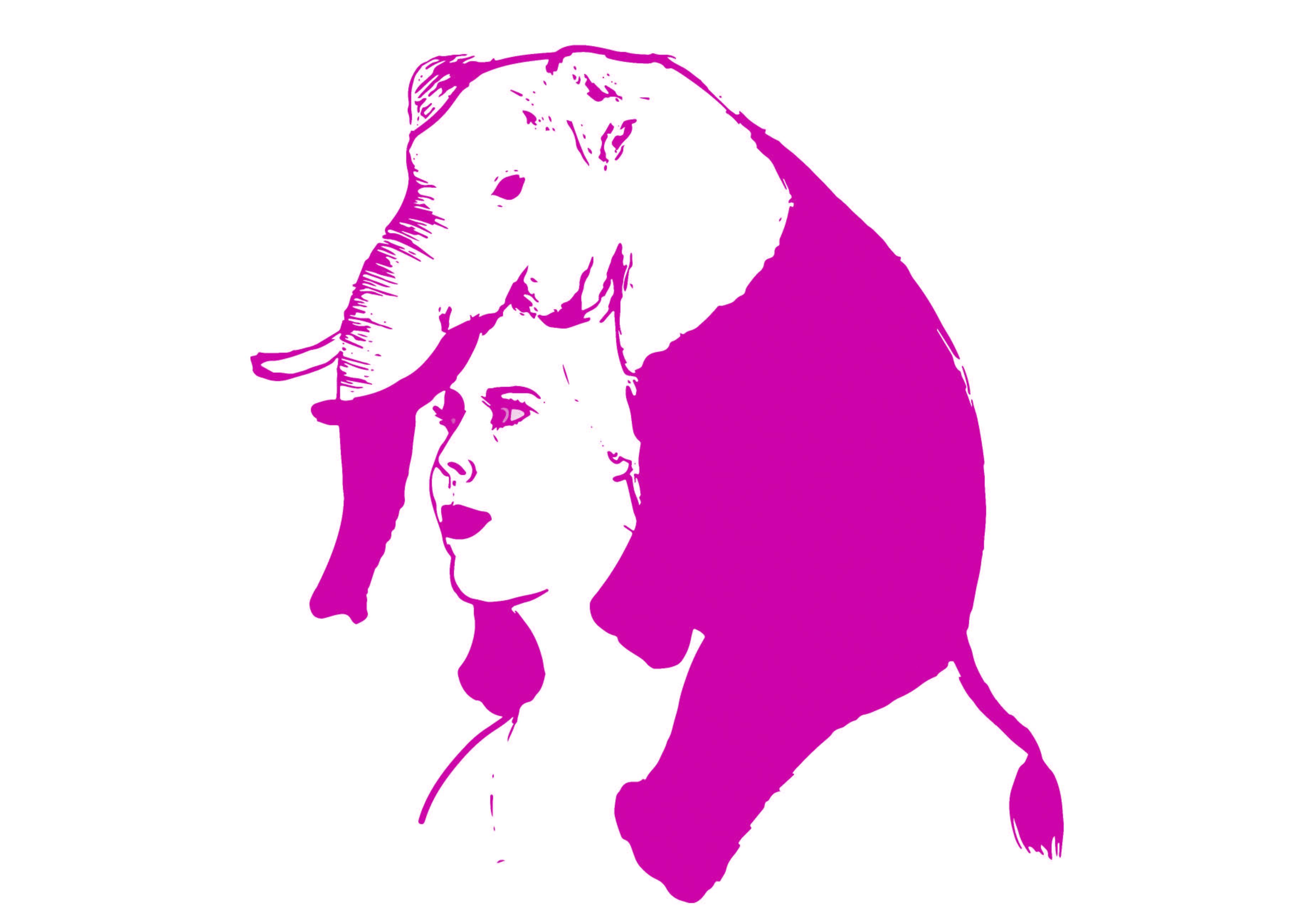 1 Roze Olifant - Sanne Clement
