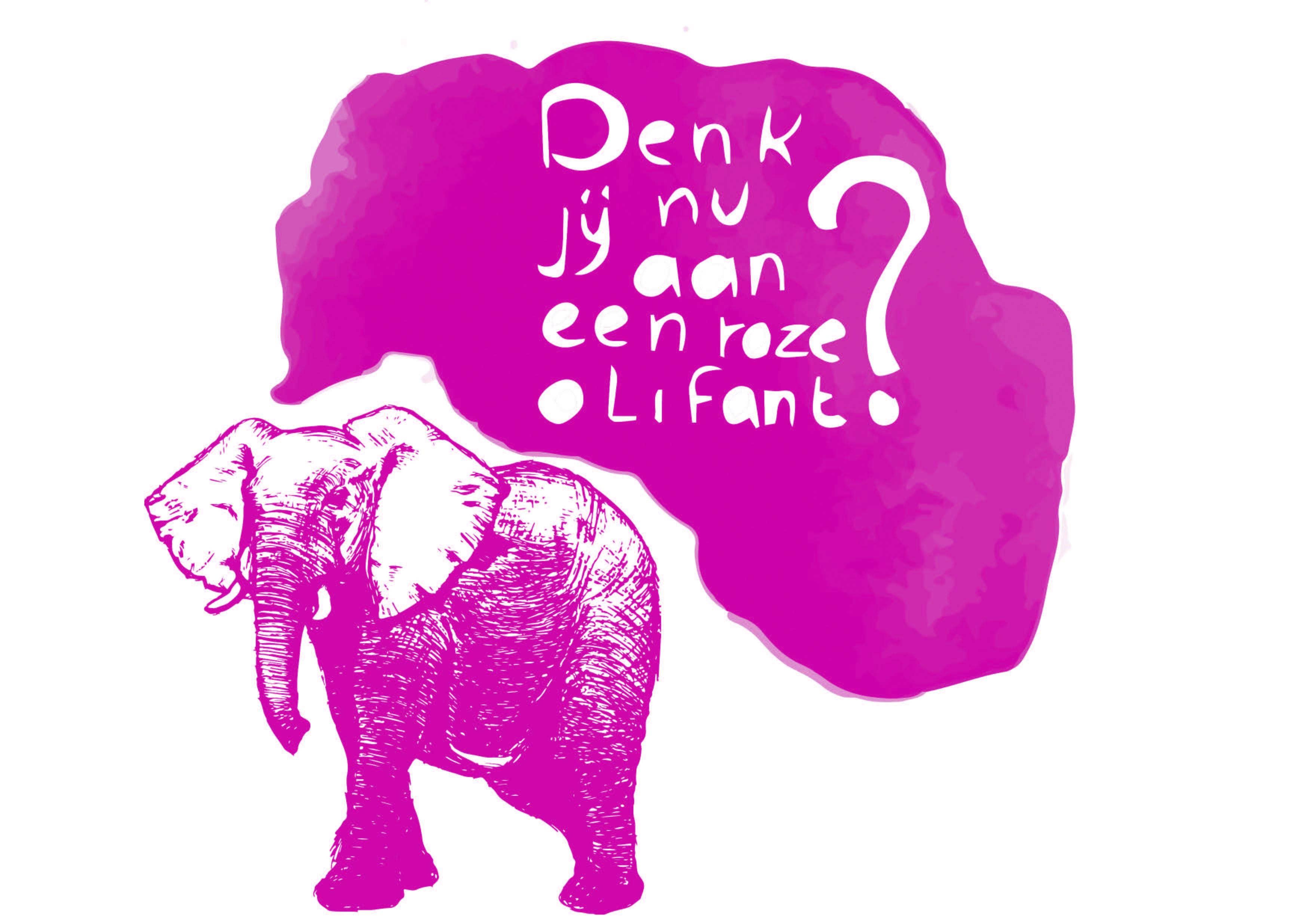 16 Roze Olifant - Sanne Clement