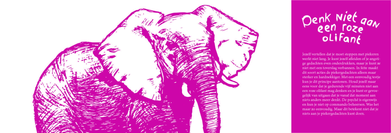 2 Roze Olifant - Sanne Clement