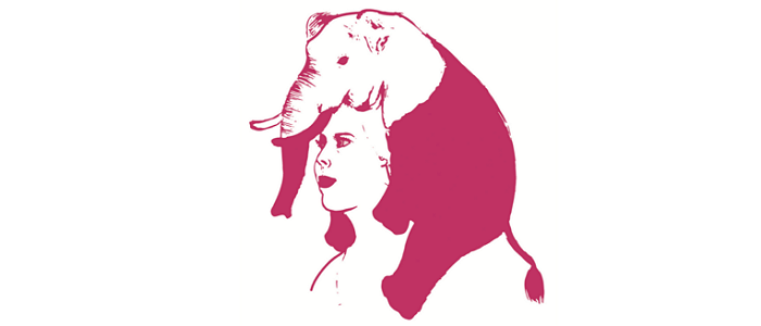 IMG - Roze Olifant Sanne Clement
